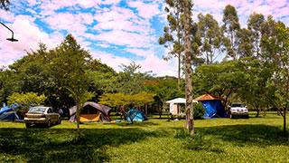 Fazenda Sakura - Camping Raio de Sol