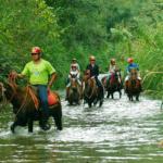 Cavalgadas e passeios a cavalo em Brotas