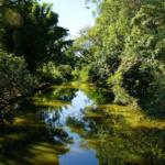 Ecoturismo e Natureza em Brotas