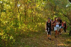 Série Pé na Trilha: 5 trilhas em São Paulo que você precisa ...