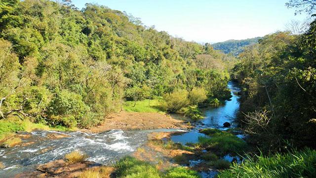 Eco Parque Jacaré Brotas